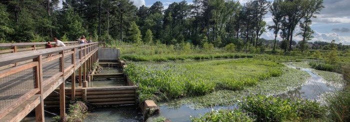 Hendrix Creek Preserve – Ecological Design Group